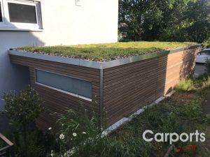carport dachbegrünung 5